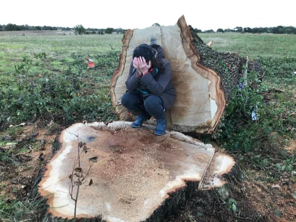 A person with their head in their hands crouched on the stump of The Hunningham Oak, with the trunk behind them.